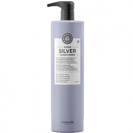 Sheer Silver Masque